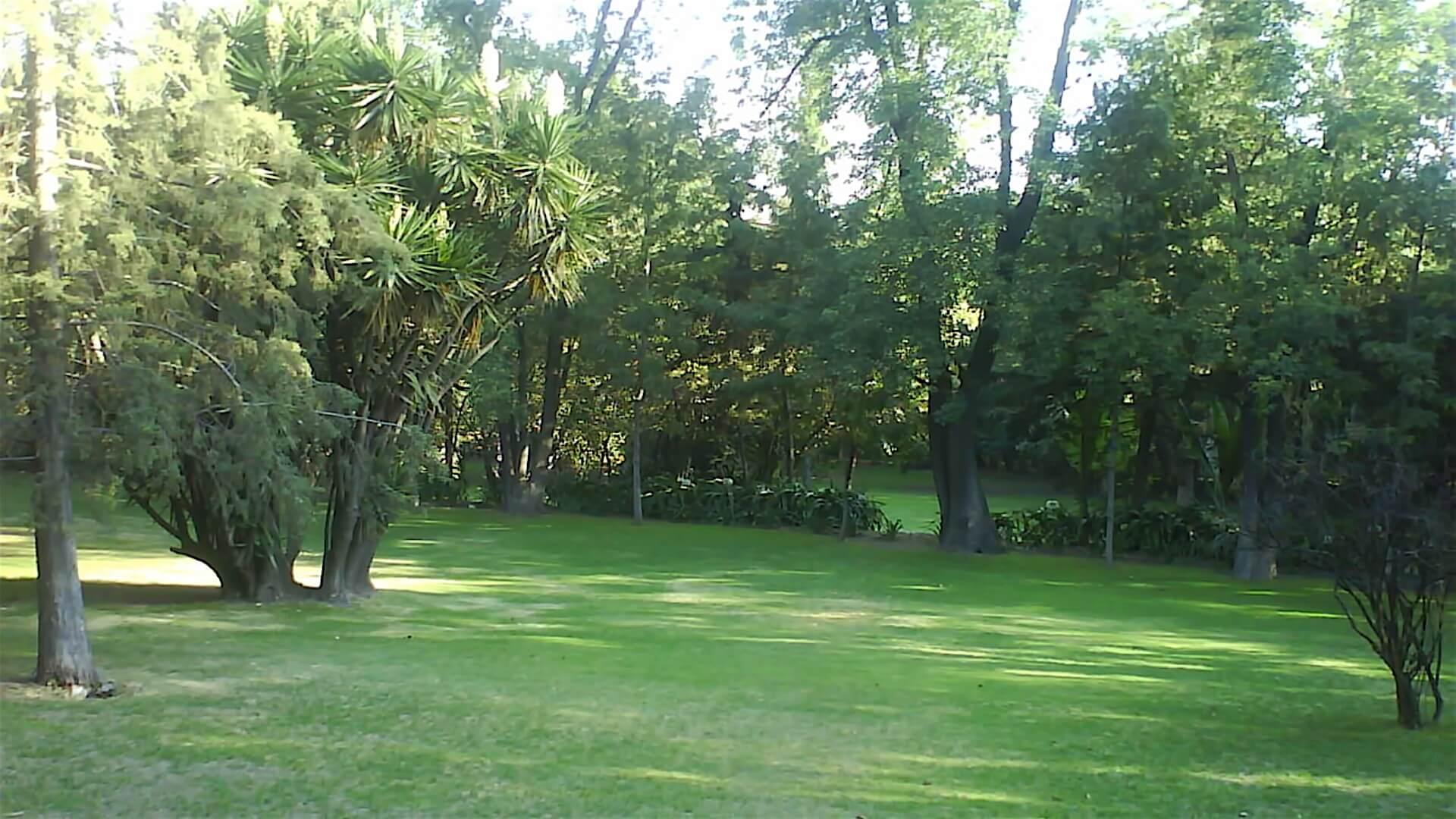 Jardín de la Yuca  Museo Hacienda de Santa Mónica